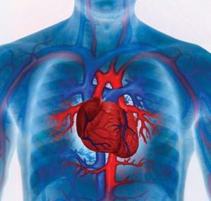 たこつぼ型心筋症